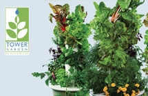 buy-tower-garden