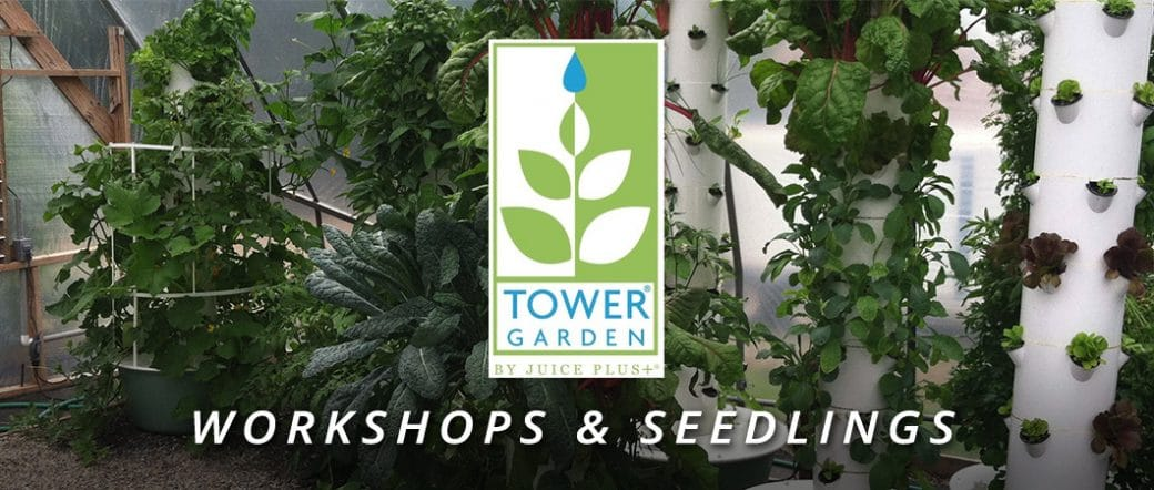 Tower Garden Workshops and Seedlings